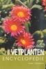 Z. Jezek, Geïllustreerde Vetplanten encyclopedie