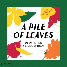 Jason Fulford | Tamara Shopsin A Pile of Leaves