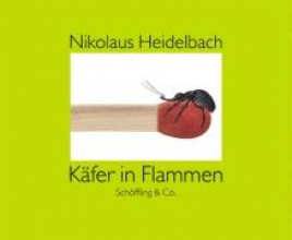 Heidelbach, Nikolaus Käfer in Flammen