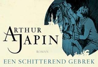 Arthur  Japin Een schitterend gebrek - DL