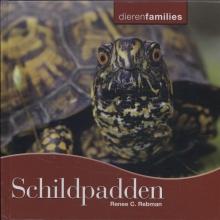 Renee  Rebman Schildpadden