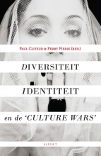 , Diversiteit, identiteit en de 'culture wars'