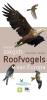 Peter  Hayman, Rob  Hume, ,Roofvogels van Europa