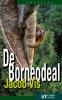 Jacob  Vis,De Borneodeal