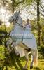 Patricia de  Mes-Ronke,De paardenrevolutie