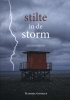 Marijke  Gootjes ,Stilte in de storm