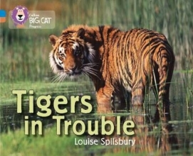 Louise Spilsbury Tigers in Trouble