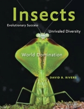 David B. Rivers Insects