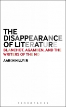 Hillyer, Aaron Disappearance of Literature