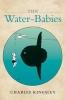 Kingsley, Charles, Water-babies