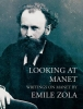 Zola, Emile, Looking at Manet