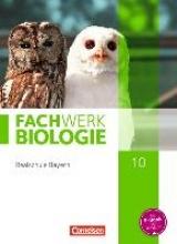 Dives, Ulrike,   Tegtmeyer, Ulrike,   Zitzmann, Josef Johannes,   Hampl, Udo Fachwerk Biologie 10. Jahrgangsstufe Schülerbuch. Realschule Bayern - Ausgabe 2014