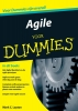 Mark C.  Layton,Agile voor Dummies