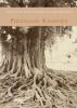 <b>Ferdinand   Kiemeneij</b>,Tranen en troost onder de waringinboom