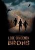 Nicki  Deridder ,Lege Schoenen - Brons