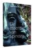 <b>Maarten van Buuren</b>,De essentie van Spinoza