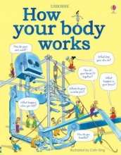 Judy Hindley, How your body works