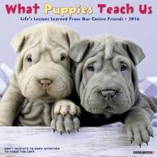 What Puppies Teach Us 2016 Calendar