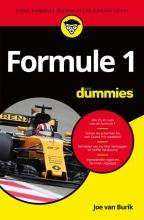 Joe van Burik Formule 1 voor dummies