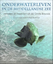 Rolf Brummel Royan van Velse, Onderwaterleven in de Middellandse zee