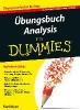 Ryan, Mark,Ubungsbuch Analysis A 2