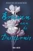 <b>Brigid  Kemmerer</b>,Brieven aan de duisternis