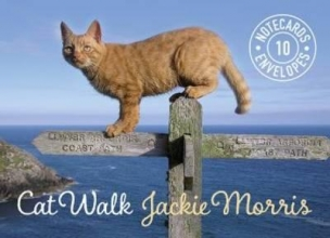 Morris, Jackie Cat Walk Notecards