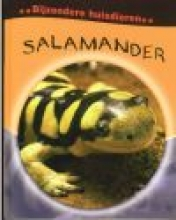 Clare  Hibbert Salamander