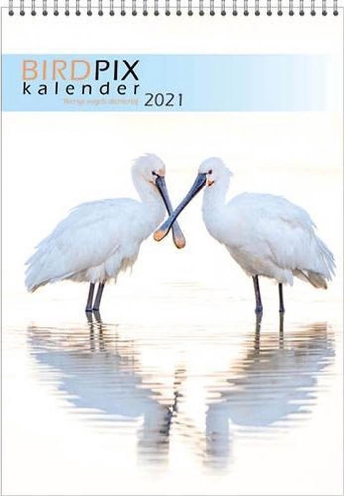 ,Maandkalender 2021 bird pix 23.5x33.5