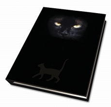 Cat`s Eyes Journal