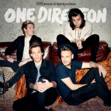 Browntrout Publishers, Inc One Direction