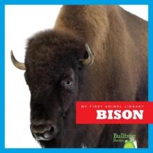 Meister, Cari Bison