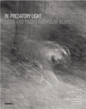 In Predatory Light