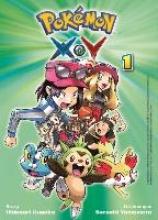 Kusaka, Hidenori Pokémon X und Y 01