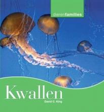 David C.  King Kwallen