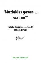 Bas van den Bosch , Muziekles geven... wat nu?