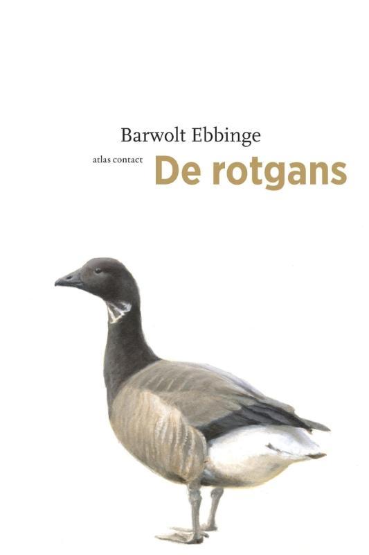 Barwolt Ebbinge,De rotgans