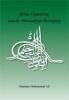 Ali  Muhammad,Juiste opvatting van de ahmadiyya beweging