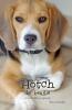 <b>Tessa  Gottschal</b>,Hotch, de Beagle