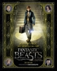 <b>Ian  Nathan</b>,Beleef de magie: Het boek bij de film Fantastic Beasts and Where to Find Them
