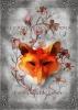 <b>Femke De Vos</b>,De kronieken van Riona Getatoe�erde lelies
