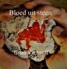 Bram Verhoeff ,Bloed uit Steen
