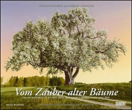 Vom Zauber alter Bäume 2019 - Wandkalender