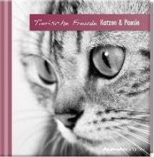 Geschenkbuch - Katzen & Poesie