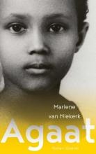 Marlene van Niekerk Agaat