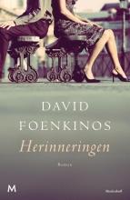 David  Foenkinos Herinneringen