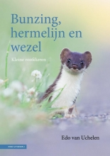 Edo van Uchelen , Bunzing, hermelijn en wezel