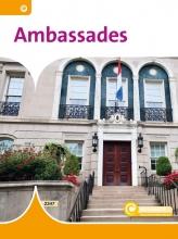 Reindert Brongers Bo Buijs, Ambassades