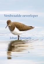 Johan  Everaers Verdwaalde oeverloper