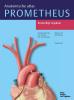 Michael  Schünke, Erik  Schulte, Udo  Schumacher,Prometheus Anatomische atlas 2